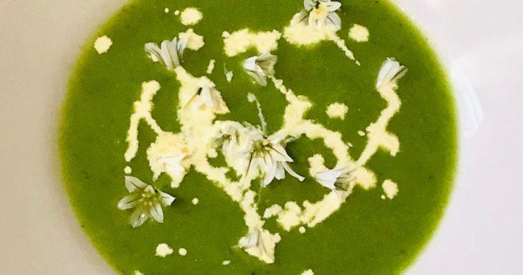 Day 12: Wild Garlic Soup